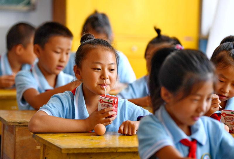 农村小学生享受免费营养餐