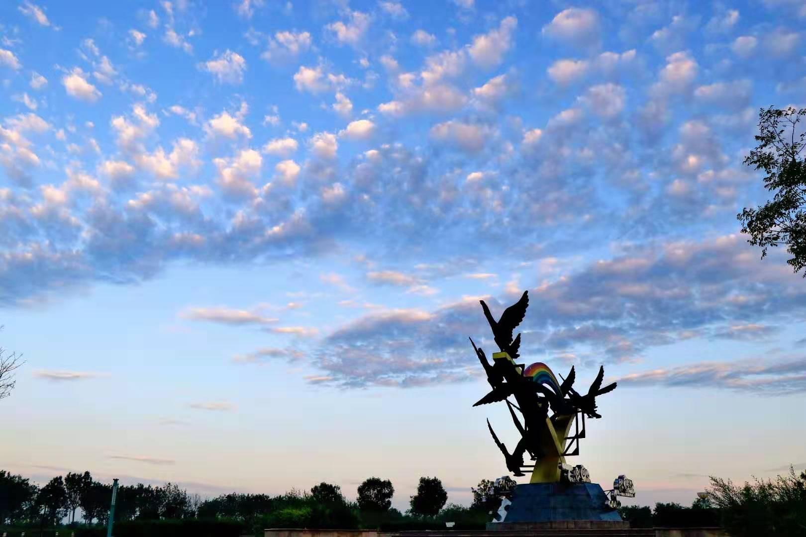 【视频】富氧之乡—沧州渤海新区南大港湿地