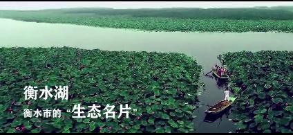 【壮丽70年·美丽新衡水】
