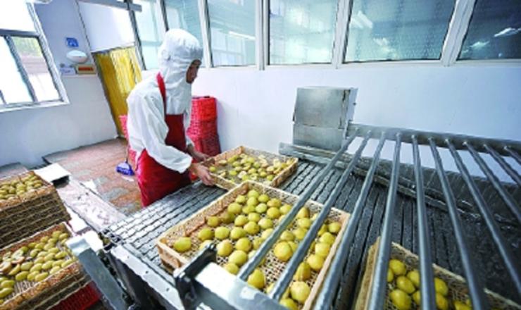 果品深加工延伸产业链