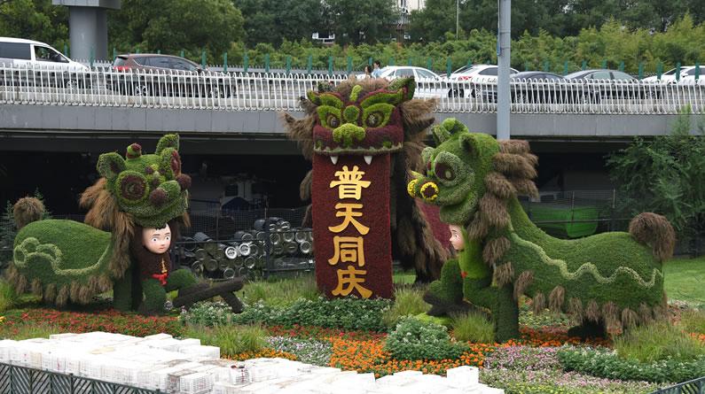 北京:《彩狮献瑞》花坛精彩亮相街头 花团锦簇喜迎国庆节