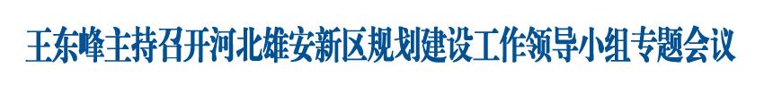王东峰主持召开河北雄安新区规划建设工作领导小组专题会议