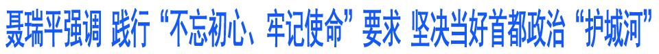 """聂瑞平在调研检查安全生产食药品安全和信访稳定等工作时强调 践行""""不忘初心、牢记使命""""要求 坚决当好首都政治""""护城河"""""""