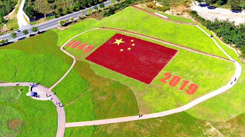 河北秦皇岛:花海国旗吸引游客目光