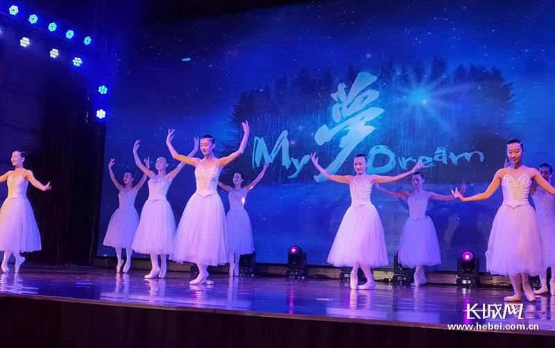 中国残疾人艺术团在南皮进行专场公益演出