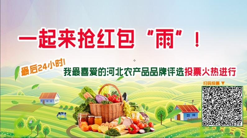 """""""我最喜爱的河北农产品品牌""""评选投票火热进行"""