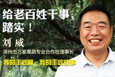 [我的丰收冀]80后电商刘威:给老百姓干事就行!