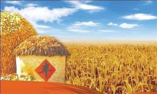 上半年农民收入增速达6.6% 农业结构持续优化