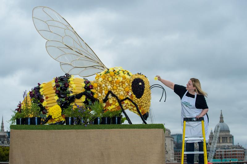 可食用蜜蜂雕塑