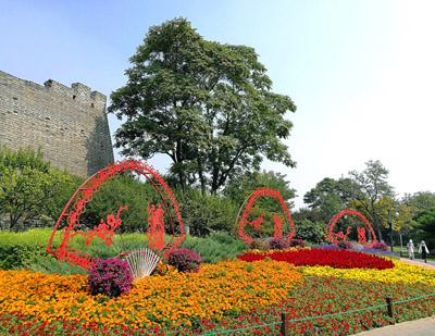 北京:明城墙遗址公园花团锦簇迎国庆
