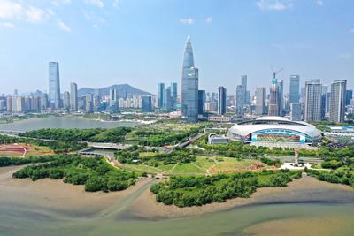 """深圳已建成公园1090个 实现""""千园之城""""建设目标"""