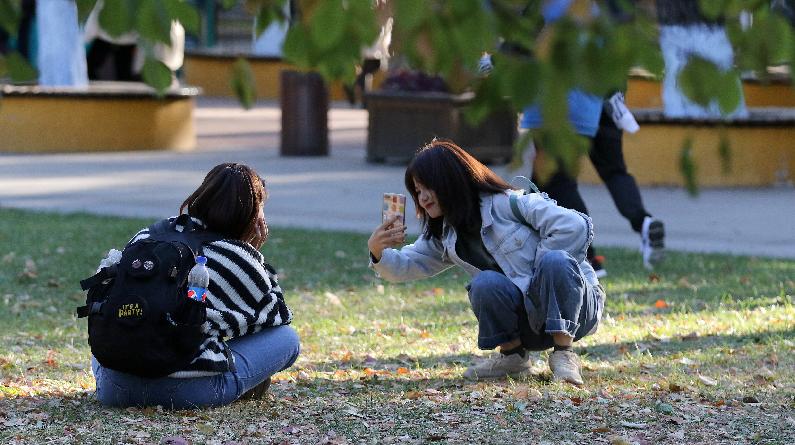 哈尔滨气温骤降秋意阑珊 市民外出赏秋好心情依旧