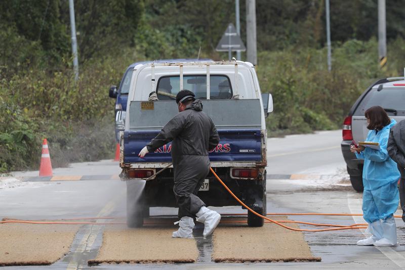 韩现第14例非洲猪瘟确诊病例