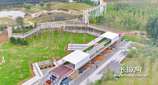 秦皇岛:海滨国家森林公园开园