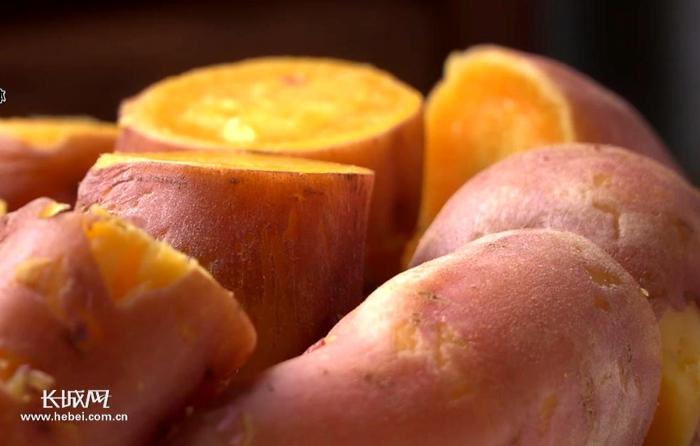 【河北省农业品牌系列报道】⑨ 邱县红薯:甜到心里