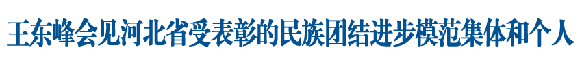 王东峰会见河北省受表彰的民族团结进步模范集体、模范个人