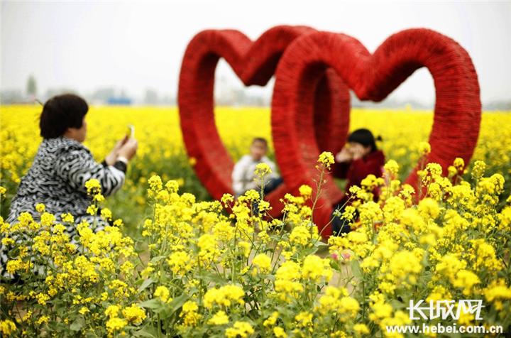 衡水杨屯:小乡村大变化 生态旅游助力乡村振兴