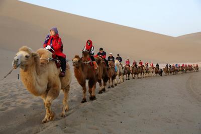 甘肃酒泉:游客骑骆驼体验沙漠风情