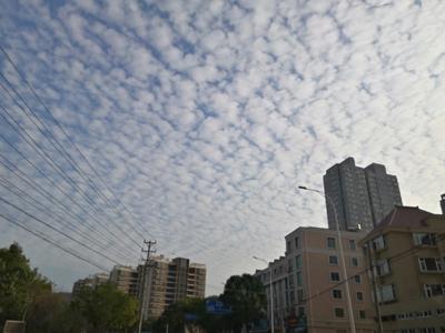 """浙江台州:温岭上空出现""""鱼鳞云"""""""