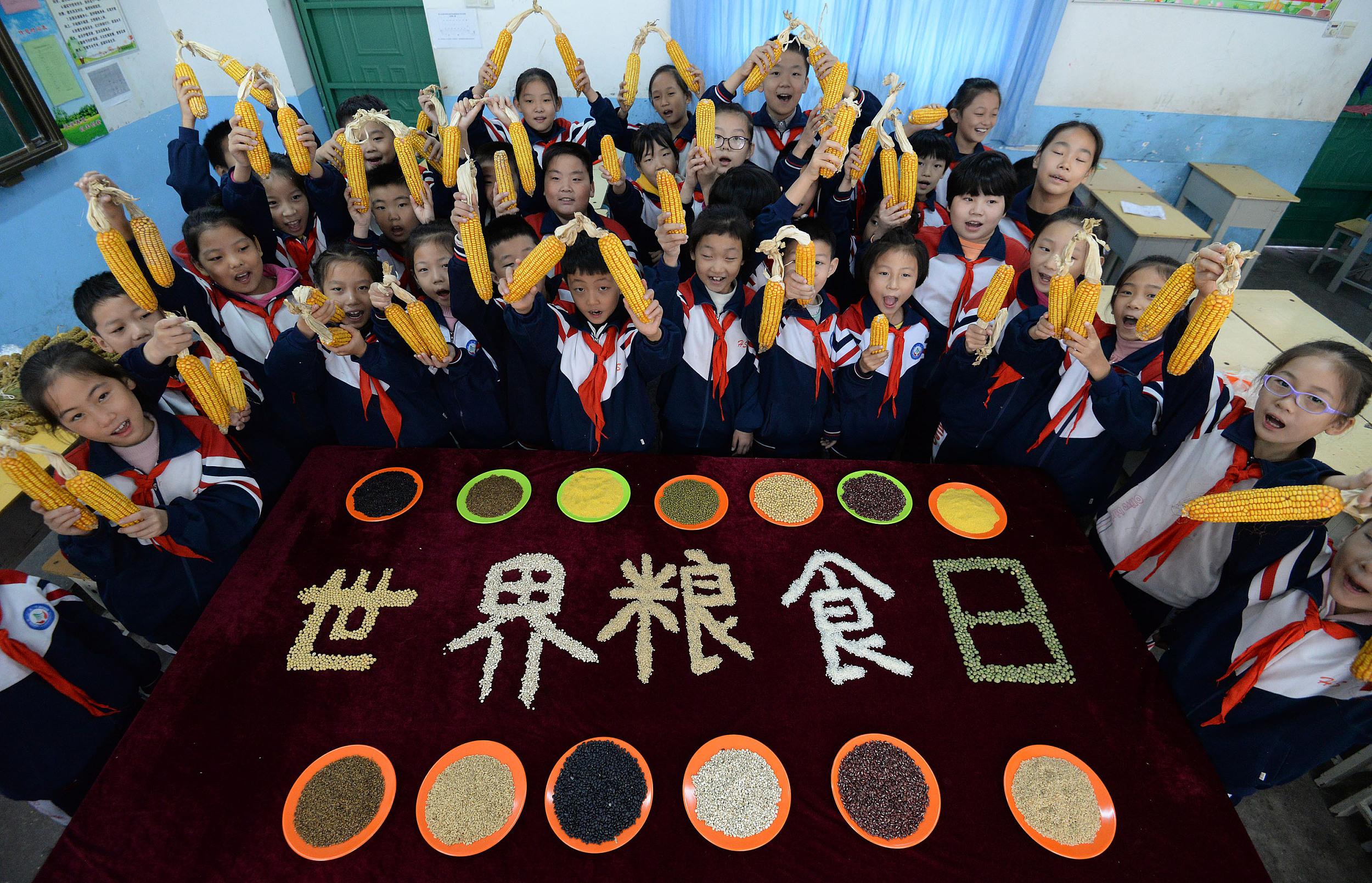 """河北邯郸开展""""爱惜粮食""""主题教育活动 迎接""""世界粮食日"""""""