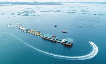 深交所:将加大海洋产业拟上市企业培育力度