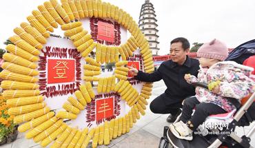 """定州举办""""2019年中国农民丰收节""""庆祝活动"""