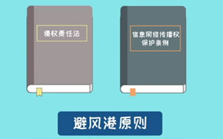 知识产权保护的避风港原则(一)