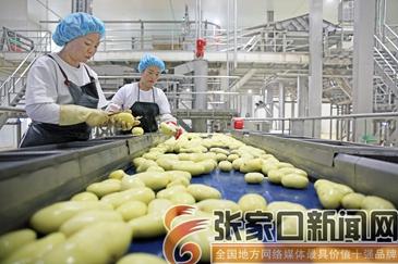 马铃薯托起农民幸福生活