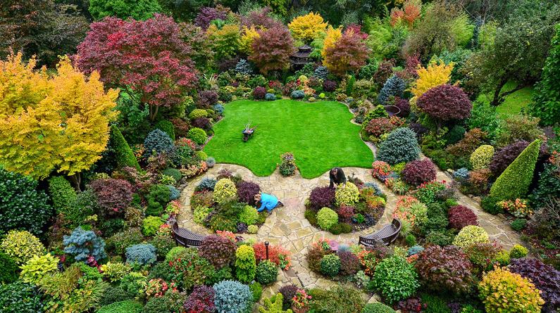 """英国老夫妇巧手打造""""四季""""花园 色彩斑斓留住四季风光"""