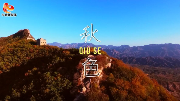 【微视频】秋·色