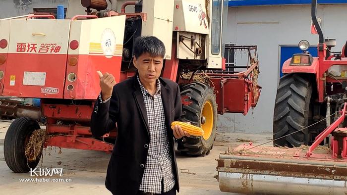 """5口人种1000亩地!藁城区家庭农场成了""""全国典型"""""""
