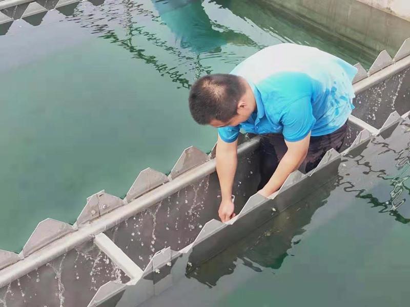 邯郸东部水厂顺利完成沉淀池部分工艺改造