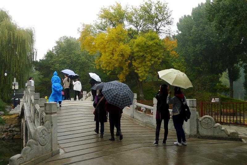 北京:圆明园秋雨绵绵