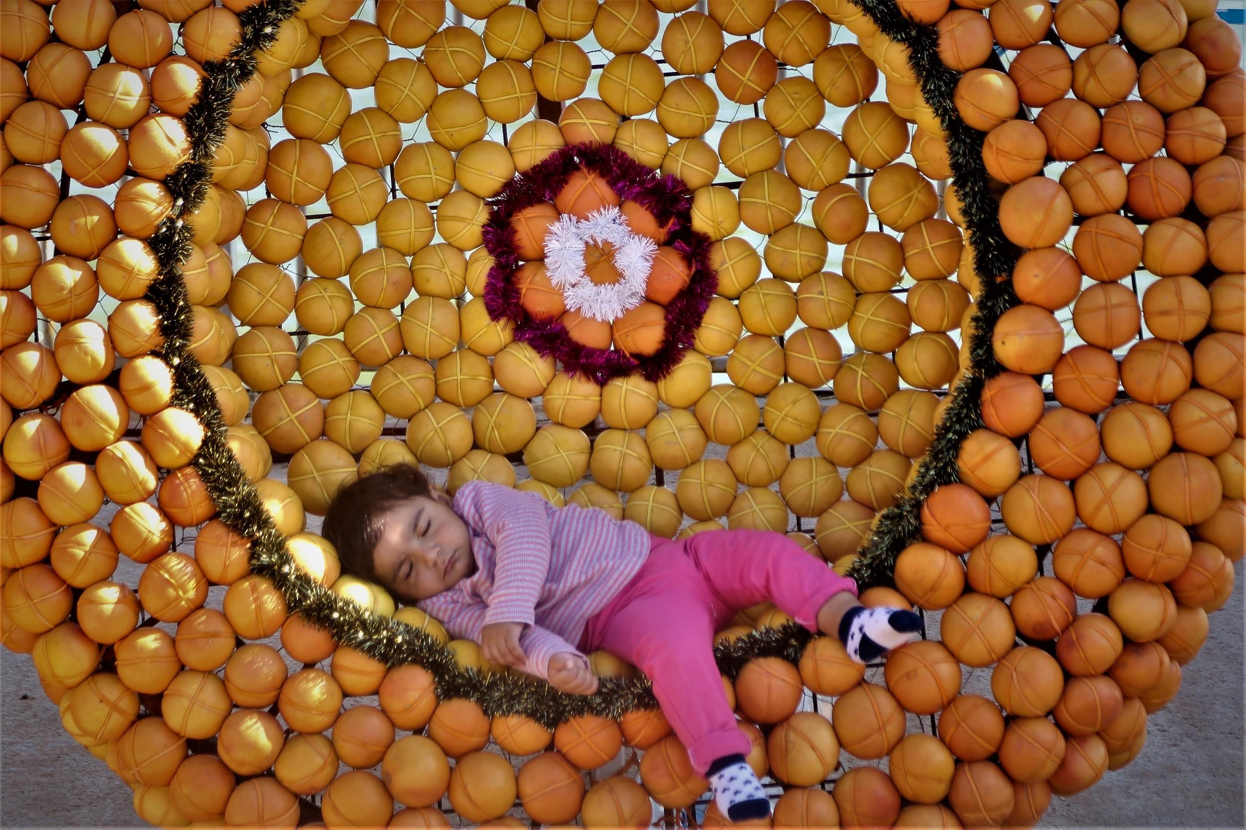 """土耳其梅尔辛国际性性柑橘节持续举办 巨型柑橘""""吉他""""吸睛"""