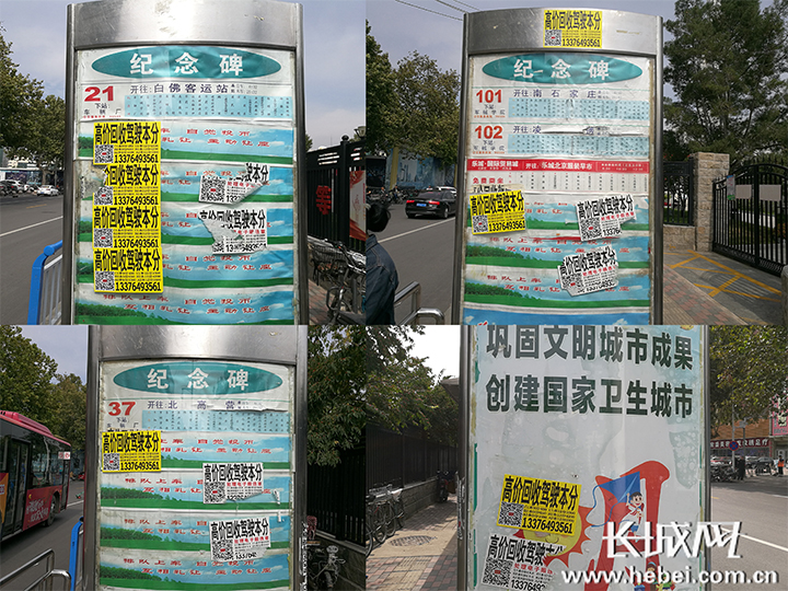 烦!小广告竟盯上公交站牌