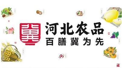 河北农产品品牌整体形象发布