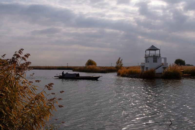 白洋淀秋季景色美