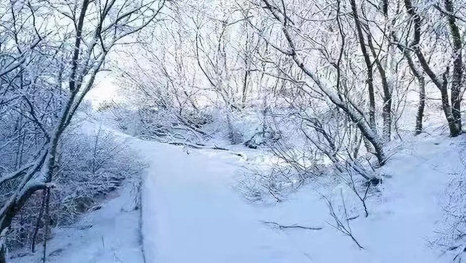 张家口下雪了!你那儿下雪了吗?附高速站口信息