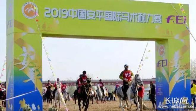 2019中國安平國際馬術耐力賽在安平舉行