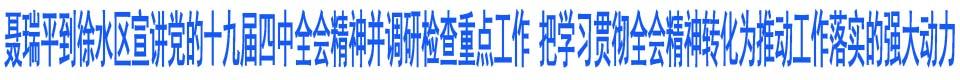 聂瑞平到徐水区宣讲党的十九届四中全会精神并调研检查重点工作 把学习贯彻全会精神转化为推动工作落实的强大动力