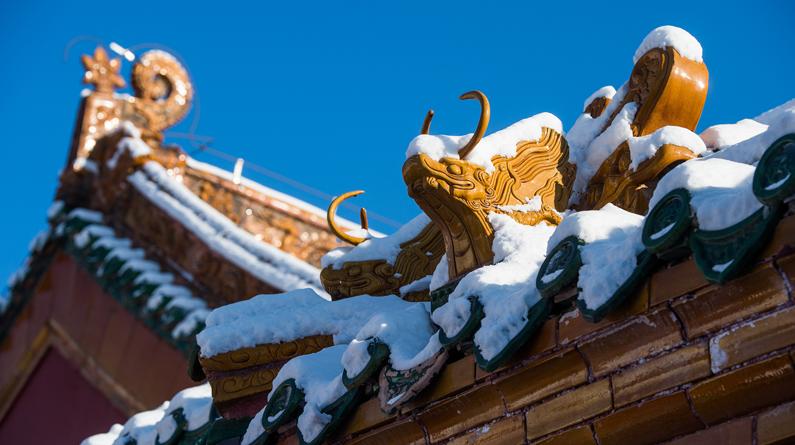 """白雪镶红墙 雪后沈阳故宫红墙""""白瓦""""分外美丽"""