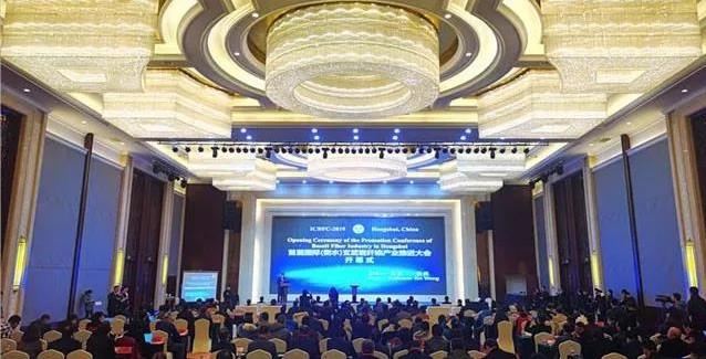 首届国际(衡水)玄武岩纤维产业推进大会在衡水市举行