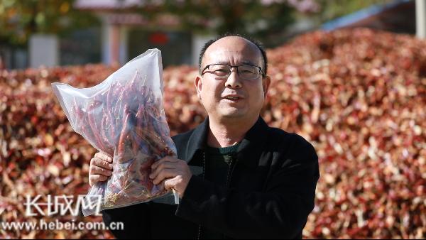 河北省望都县辣椒产业办公室主任为家乡代言