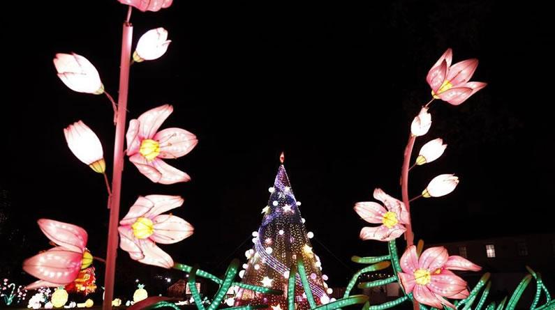 第二届纽约花灯游园会开幕