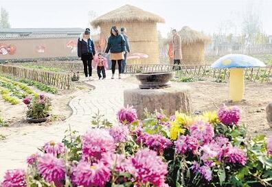 肥乡:村里有了小游园