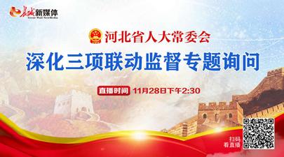 河北省人大常委会深化三项联动监督专题询问