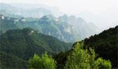 我省確定太行山燕山2035年森林覆蓋率新目標