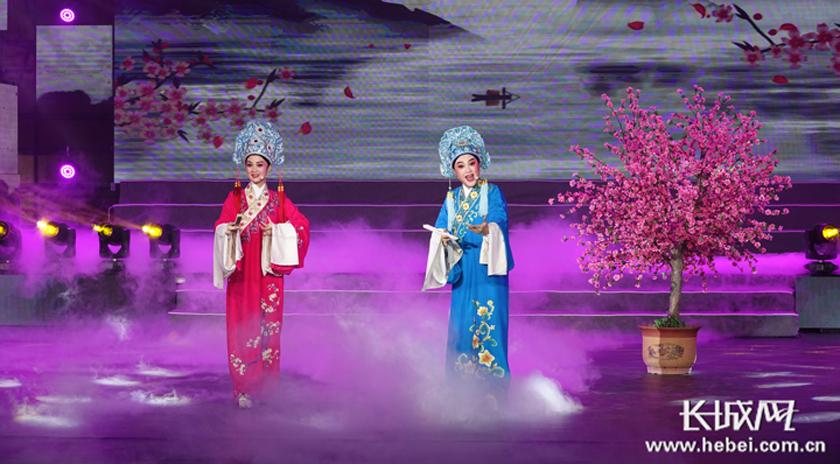 第二届中国(沧州)网络电影盛典晚会举行