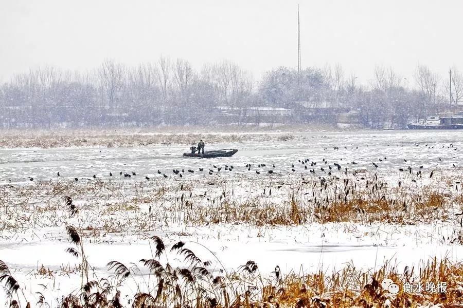 冬季结冰期 衡水湖景区停止运营