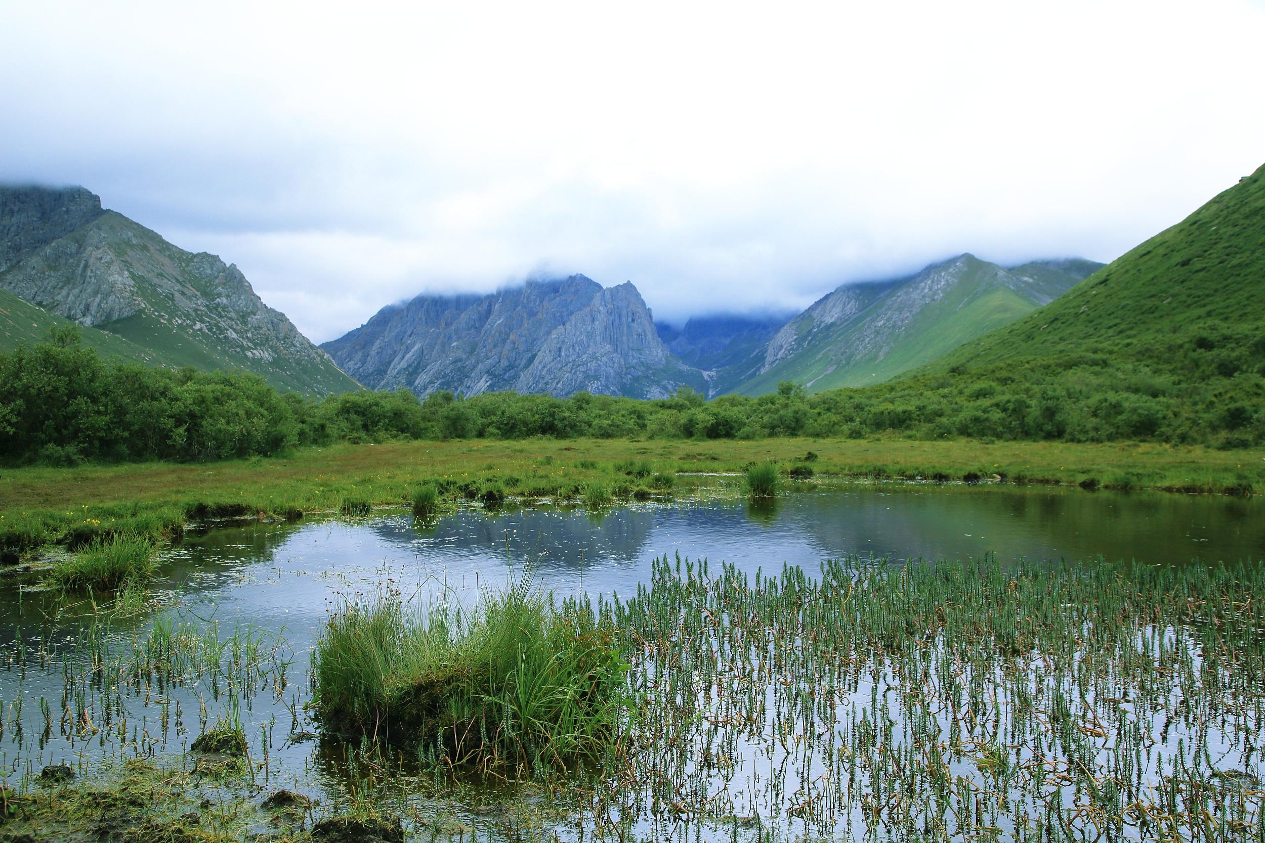 全国建立10处国家公园体制试点